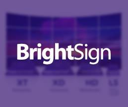 brightsign malaysia
